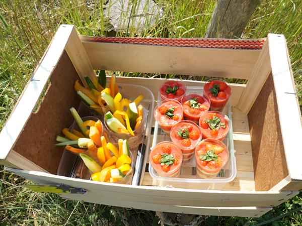 picknick-3